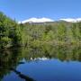 春の牛留池